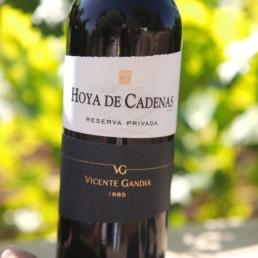Hoya de Cadenas - Vincente Gandia